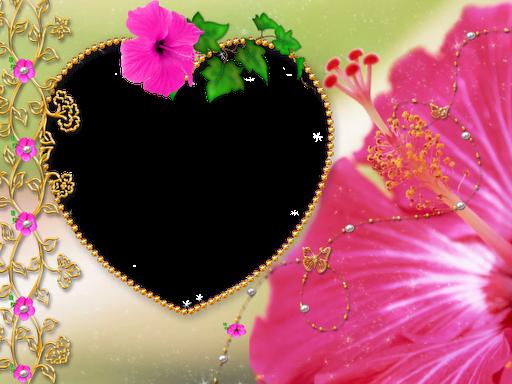 Love Frame Png Transparent Images 1293: Love Frames